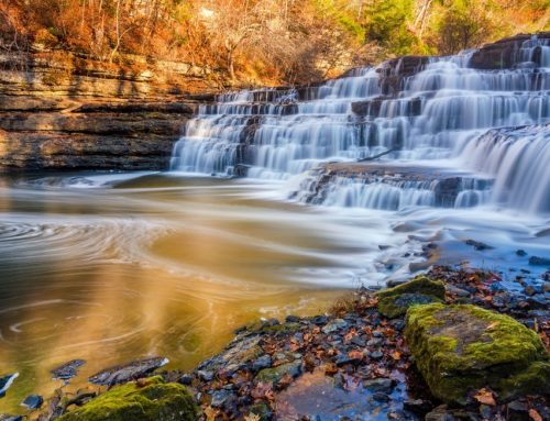 6 Nashville Swimming Holes You Don't Want To Miss